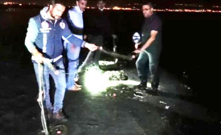 5 ton 450 kilogram Van Balığı ele geçirildi