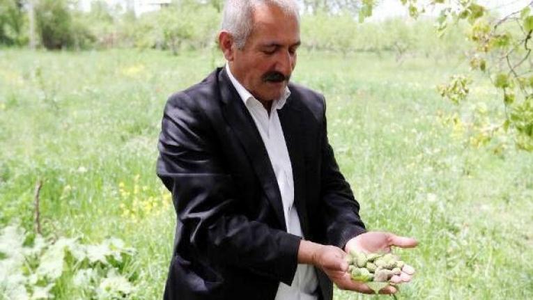 Eminpaşa Mahalle Muhtarı Raif Çiçek, vefat etti
