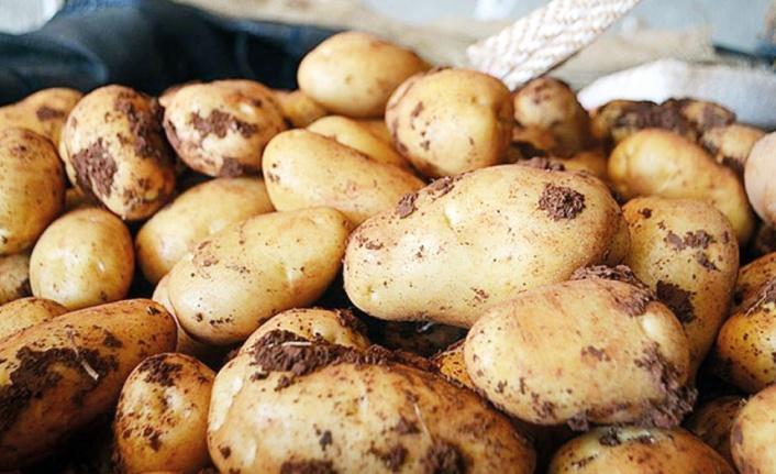 Van'da Mayıs ayında zam şampiyonu patates oldu
