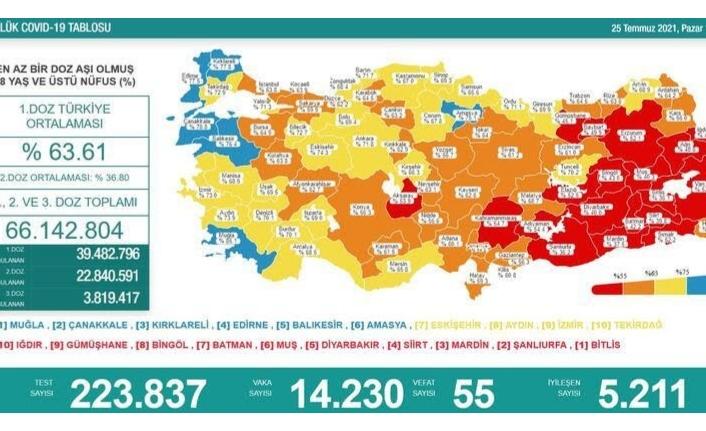 25 Temmuz verileri: Vaka sayısı 14 bin 230