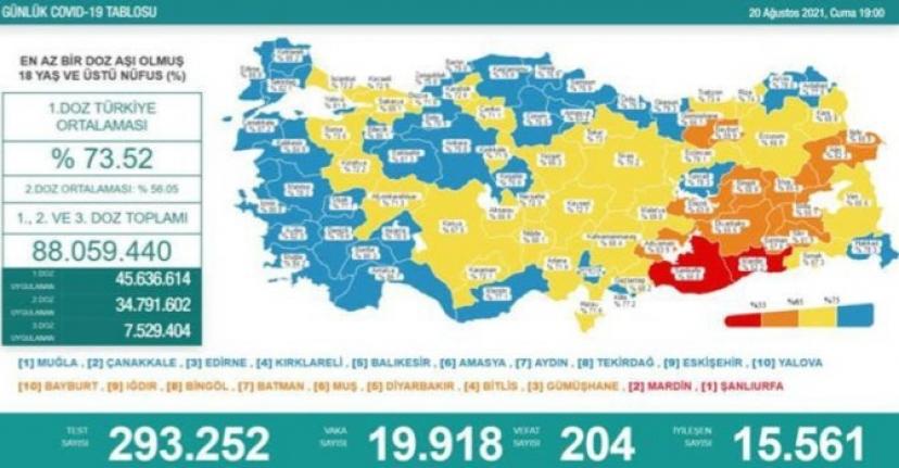 19 bin 918 vaka, 204 ölüm...