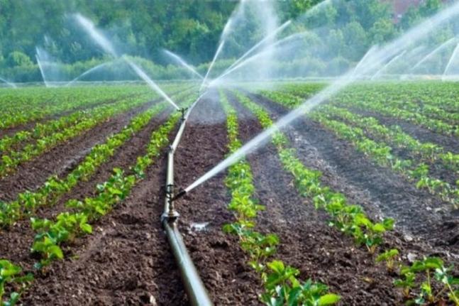Büyükşehir, sulama tesisi yapacak