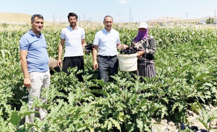 Çiftçiler hasat konusunda bilgilendirildi