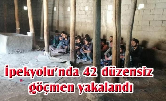 Van'da 42 göçmen iki ayrı ahırda yakalandı