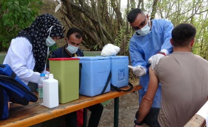 Van Gölü sahilinde aşı standı kuruldu