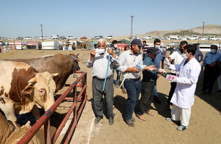 Van'da canlı hayvan pazarında denetimler artırıldı