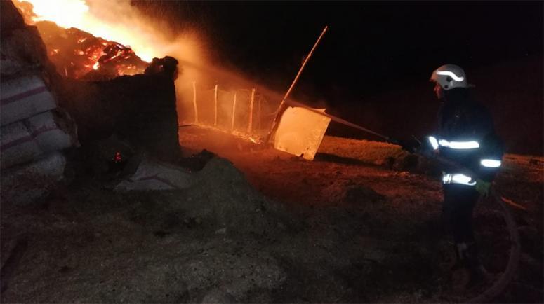 Gürpınar'da 5 bin bağ ot yandı