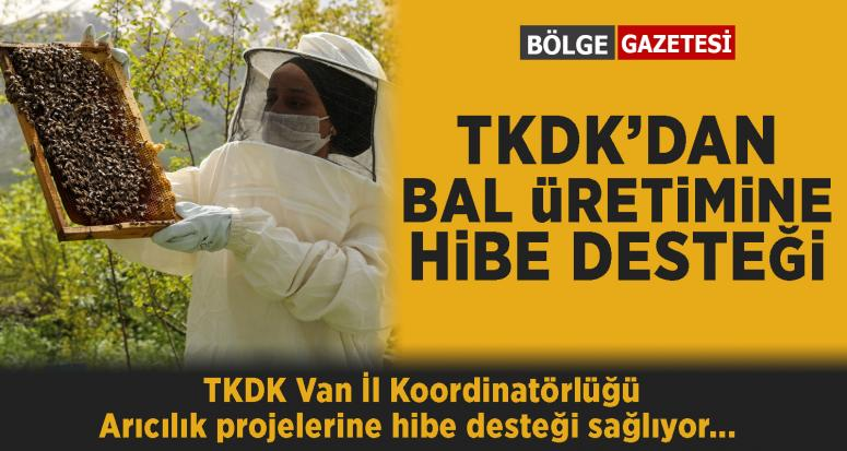TKDK'dan bal üretimine hibe destek...