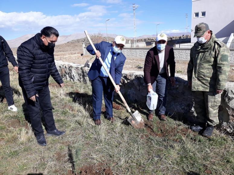Çaldıran'da 500 bin ağaç toprakla buluştu
