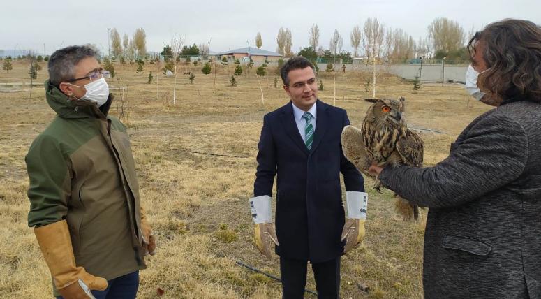Tedavileri tamamlanan kuşlar özgürlüğü kanat çırptı