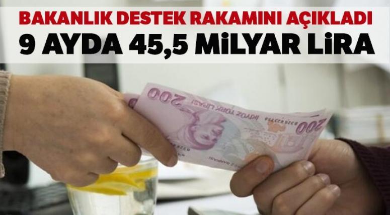 Bakanlık destek rakamını açıkladı: 9 ayda 45,5 milyar lira