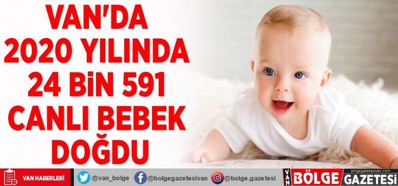 Van'da 2020 yılında 24 bin 591 canlı bebek doğdu