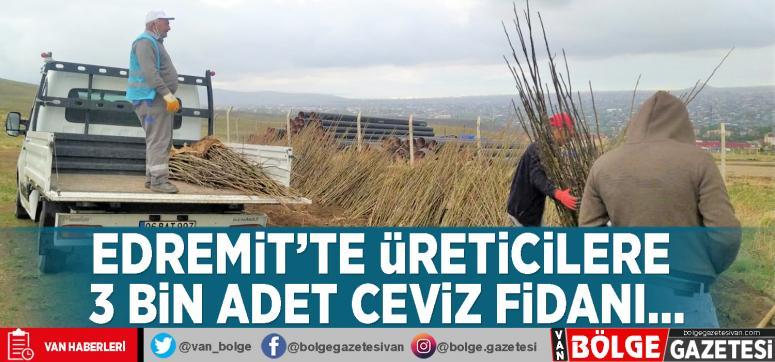 Edremit'te üreticilere 3 bin adet ceviz fidanı…
