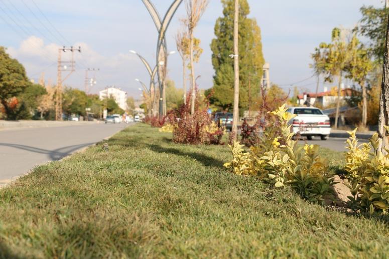 Erciş Belediyesi'nden yeşillendirme çalışmaları
