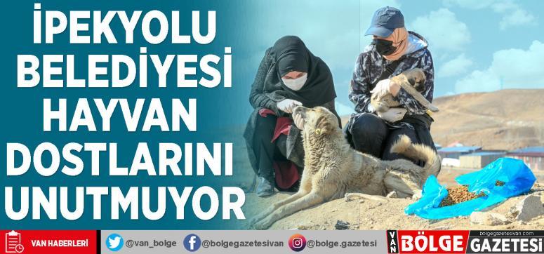 İpekyolu Belediyesi hayvan dostlarını unutmuyor