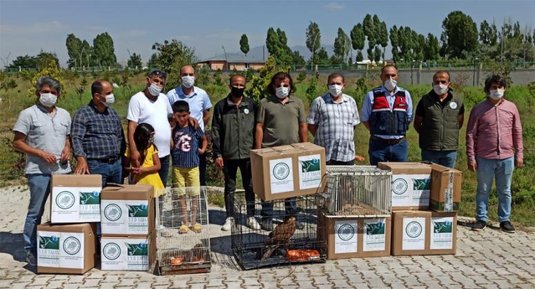 Van'da 23 kuş daha tedavi edilerek yaşam alanına bırakıldı