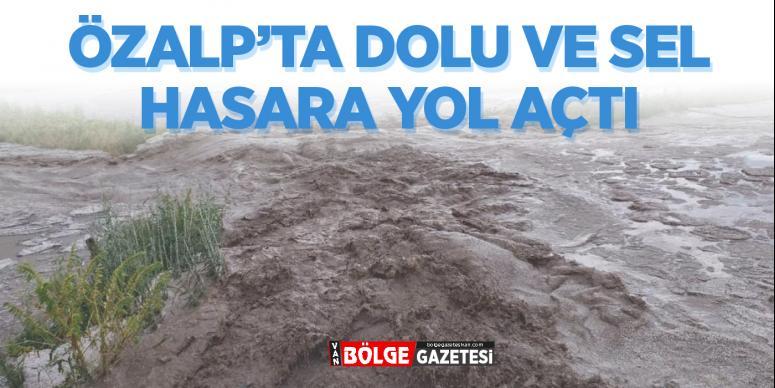 Dolu ve sel, Özalp'ta hasara yol açtı