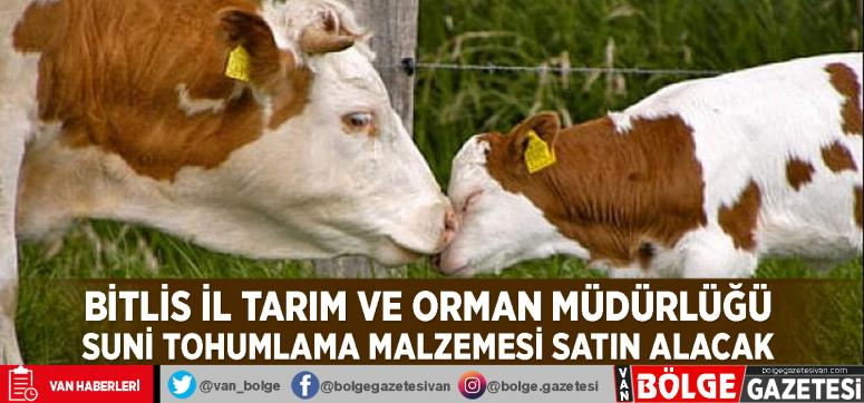 Bitlis İl Tarım ve Orman Müdürlüğü suni tohumlama malzemesi satın alacak