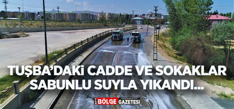 Tuşba'daki cadde ve sokaklar sabunlu su ile yıkandı