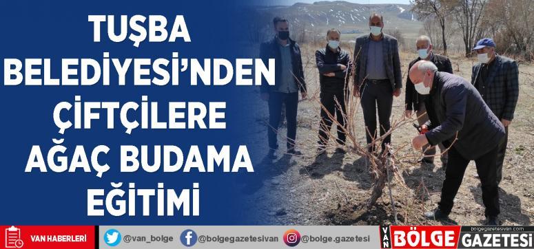 Tuşba Belediyesi'nden çiftçilere ağaç budama eğitimi