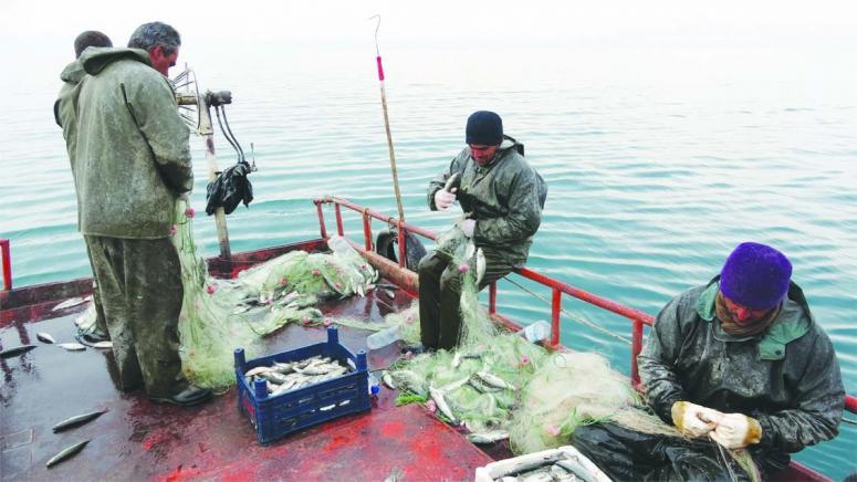 Van Balığı'nı avlamak üç ay boyunca yasaklanıyor