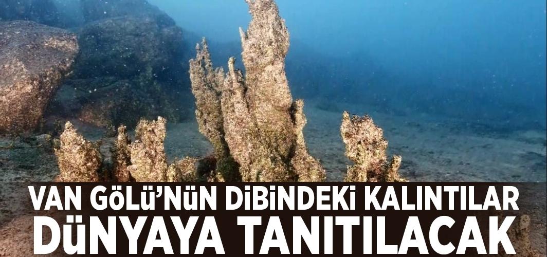 Van Gölü'nün dibindeki kalıntılar dünyaya tanıtılacak