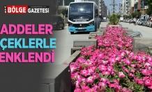 Büyükşehir'in yetiştirdiği çiçekler şehre renk katıyor
