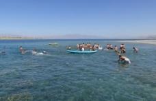 Van Gölü için 2 kilometre yüzdüler