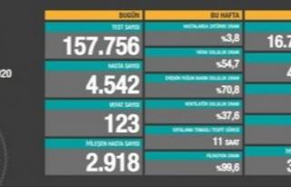 Bir günde 123 can kaybı, 4 bin 542 vaka