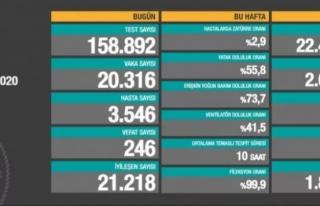 Son gün 20 bin 316 vaka, 246 ölüm...