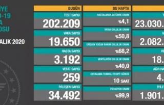 23 Aralık koronavirüs verilerinde ölü sayısı...