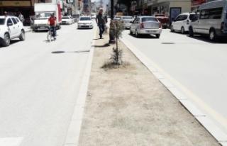Maraş Caddesi'nin orta refüjleri yeşillendirilmeli