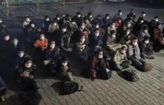 Koltukları sökülen minibüste 60 düzensiz göçmen...
