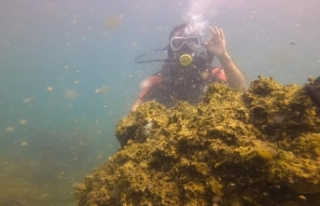 Van Gölü'ndeki mikrobiyalitlere dalış