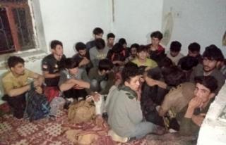 Van'da 43 düzensiz göçmen yakalandı