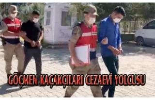 Muradiye'de iki göçmen kaçakçısı tutuklandı