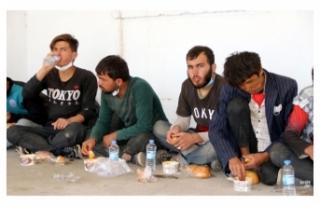 Muradiye ilçesinde 10 göçmen yakalandı