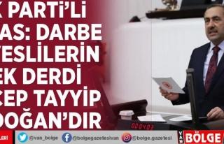 AK Parti'li Arvas: Darbe heveslilerin tek derdi...