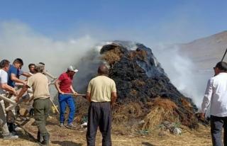 Erciş'te ot yangını paniğe neden oldu