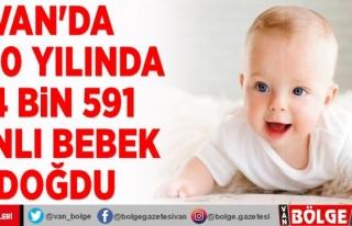 Van'da 2020 yılında 24 bin 591 canlı bebek...