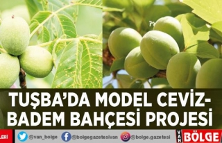 Tuşba'da model ceviz-badem bahçesi projesi