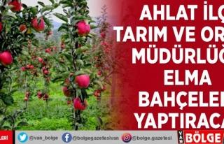 Ahlat İlçe Tarım ve Orman Müdürlüğü elma bahçeleri...