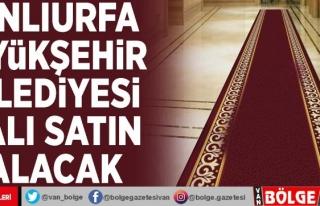 Şanlıurfa Büyükşehir Belediyesi halı satın...