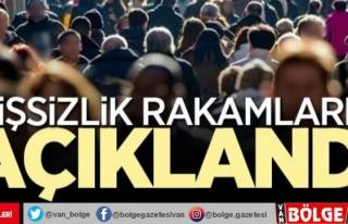 Türkiye'de kaç kişi işsiz?