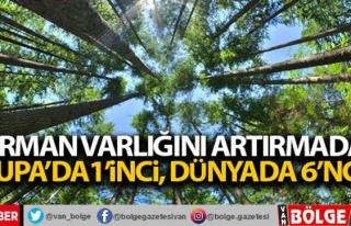 Türkiye orman varlığını artırmada Avrupa'da...