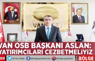 Van OSB Başkanı Aslan: Yatırımcıları cezbetmeliyiz