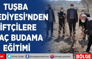 Tuşba Belediyesi'nden çiftçilere ağaç budama...
