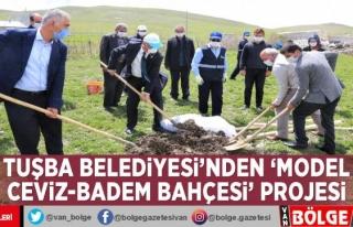 Tuşba Belediyesi'nden 'Model Ceviz-Badem...