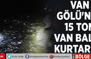 Van Gölü'nde 15 ton Van Balığı kurtarıldı