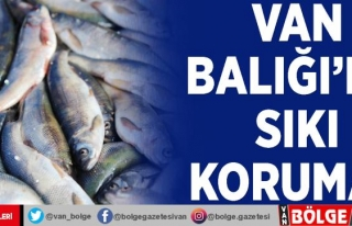 Van Balığı'na sıkı koruma…